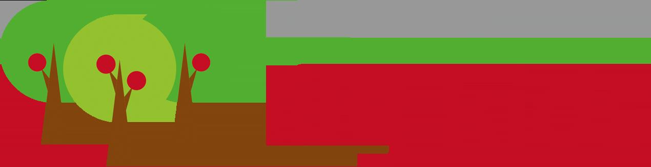 Lilykids